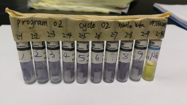 灭菌器验证中生物指示剂选择要求